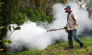 Fogging_For_Mosquitos